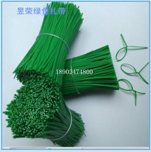 厂家直销铁丝包塑扎带 绿色扎线带 铁芯包胶扎带 PE环保扎线